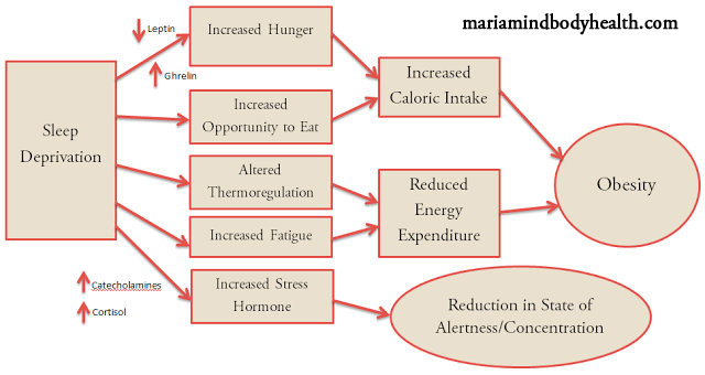 Stress & Sleep and Fat Loss